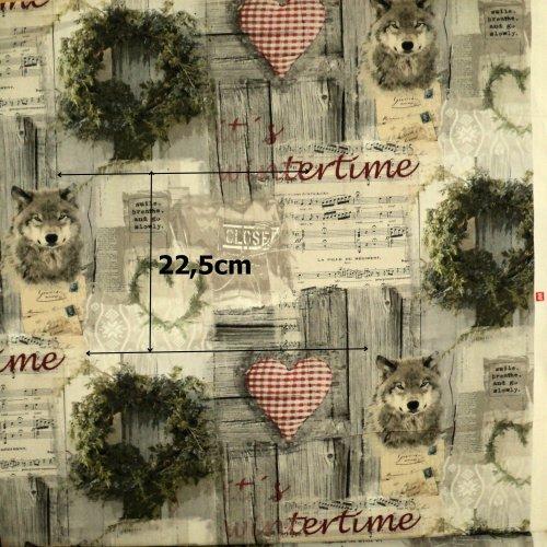 Látkadovozová, digi tisk, hrubší, 100% CO,240g/m2, šířka 140 cm, 1 ks = 22.5 cm
