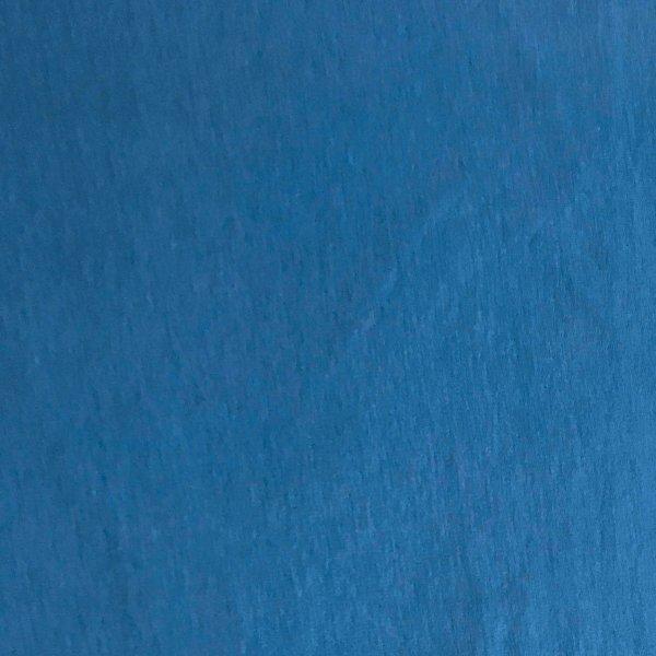 látka modrá jednoabrevná teplákovina elastická nebesky modrá light havelock blue fabric